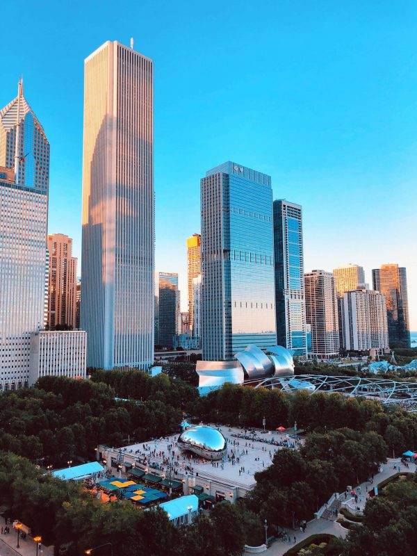 Chicago's Public Transportation Network